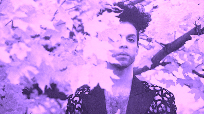 nine prince albums set for vinyl reissue this year 715x403