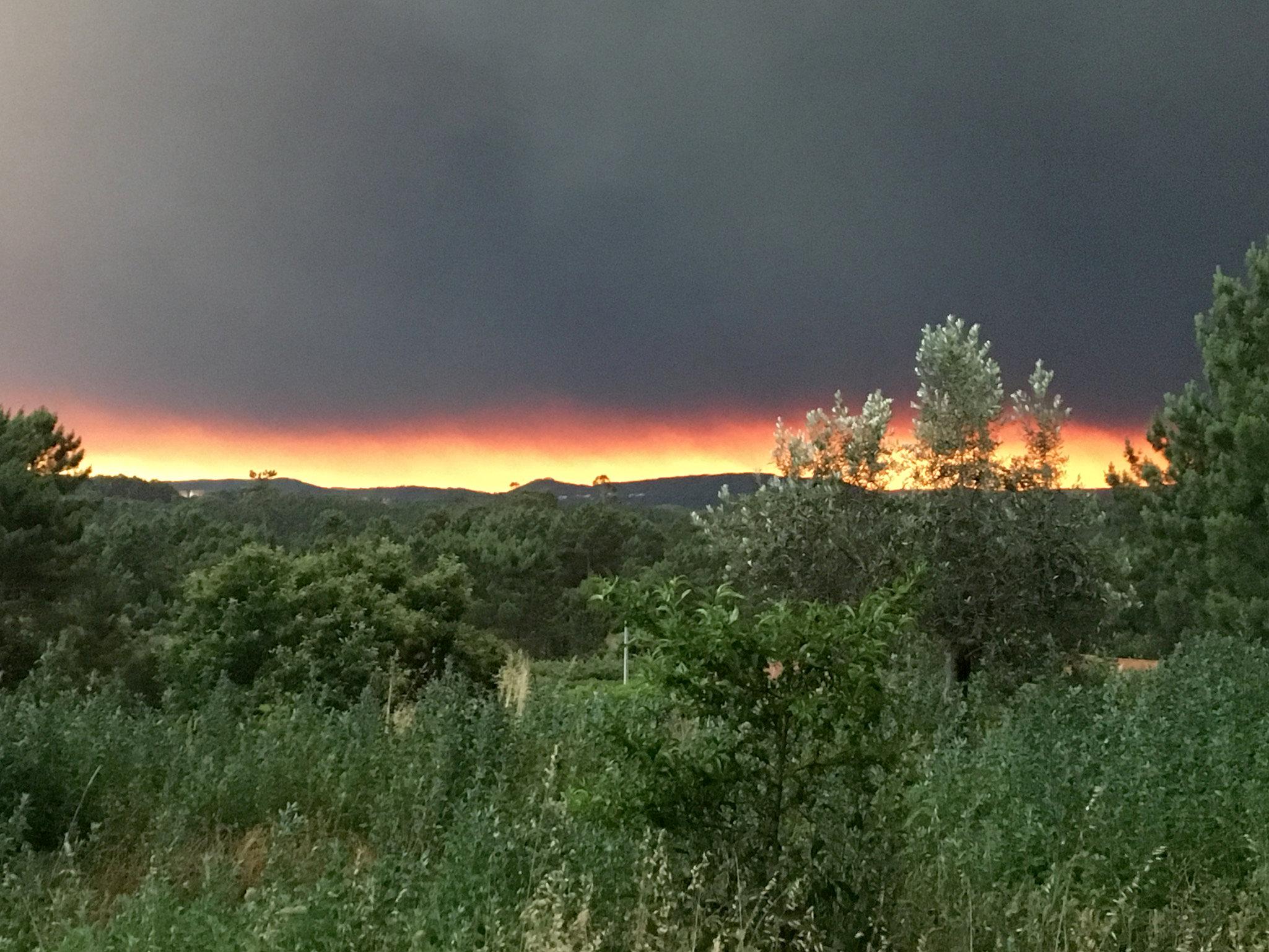 2017-06-18T005232Z 1996045150 RC1B2AE16210 RTRMADP 3 PORTUGAL-FIRE