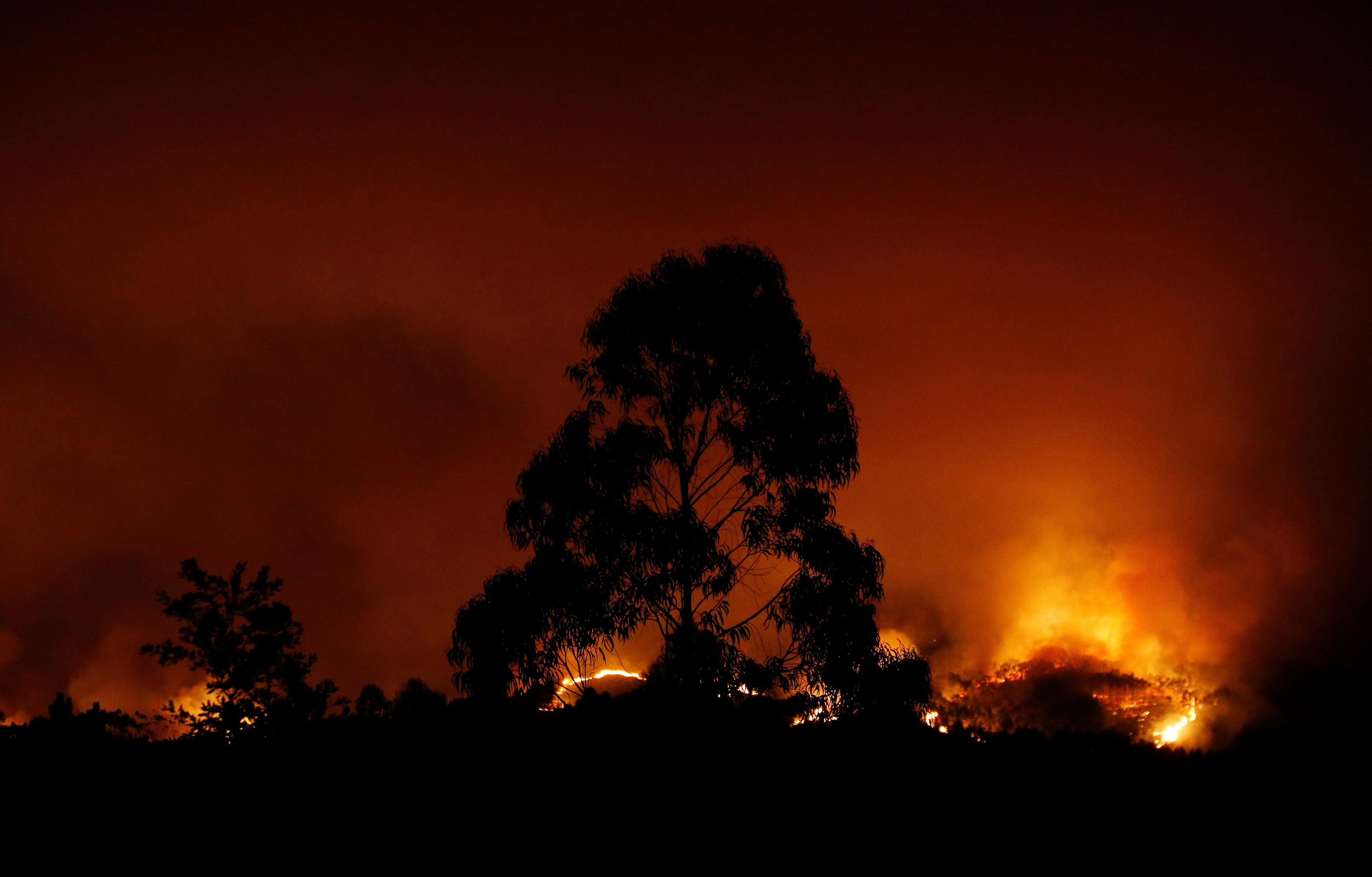 2017-06-18T025647Z 2126947540 RC18315E0500 RTRMADP 3 PORTUGAL-FIRE
