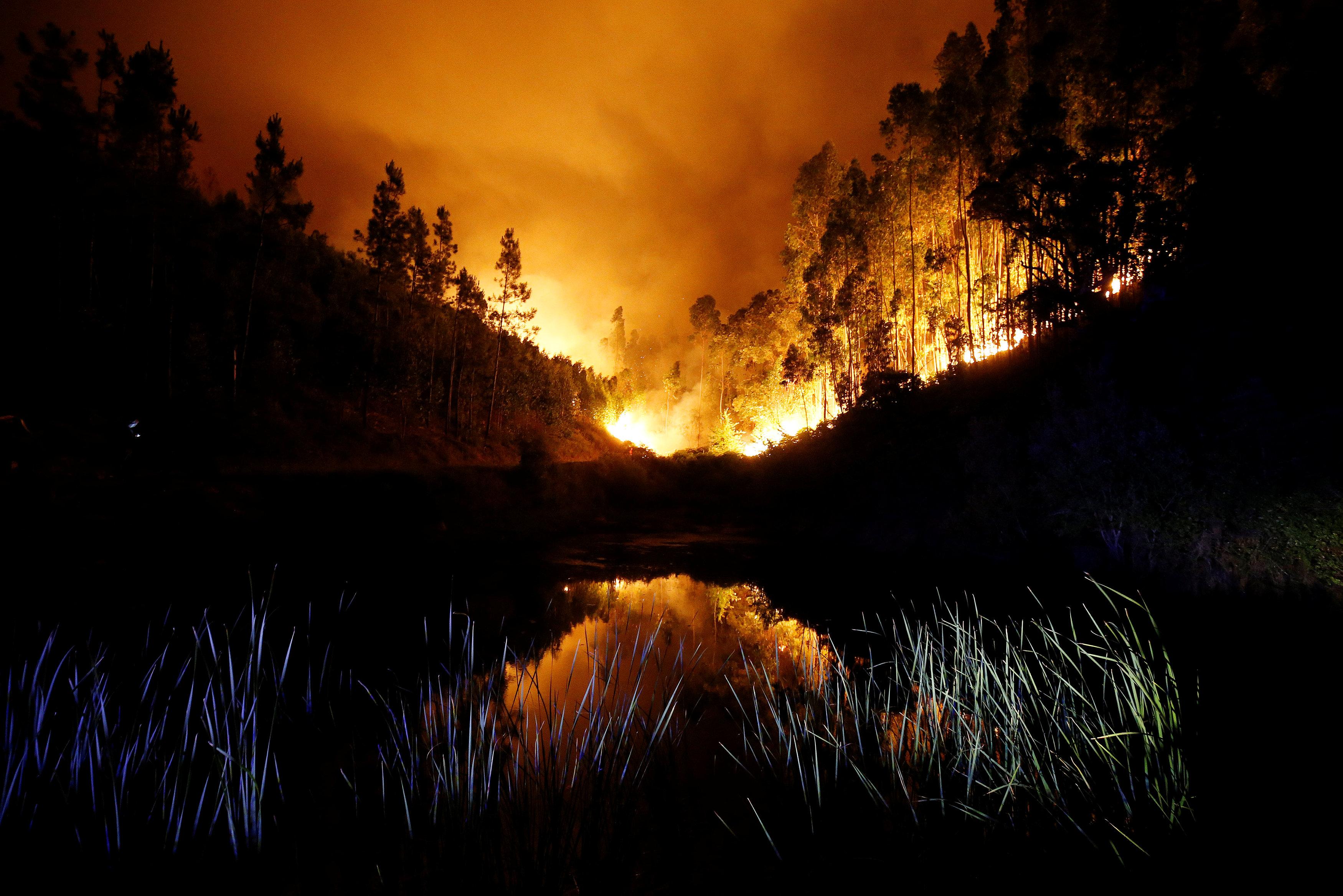 2017-06-18T061036Z 677930959 RC18AB875B10 RTRMADP 3 PORTUGAL-FIRE