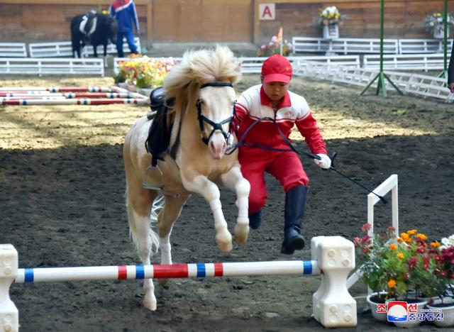 2017 10 16T082733Z 446800053 RC18BD5AD820 RTRMADP 3 NORTHKOREA GAMBLING HORSERACING