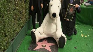 Το σκυλίσιο του ταλέντο αναγνωρίστηκε