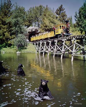 1965. Από το 1960 έως και το 1977 το Τραίνο των Ανθρακωρύχων ήταν ιδιαίτερα δημοφιλές με τα άπειρα, σχεδόν σαν ζωντανά, μοντέλα ζωϊκού βασιλείου.