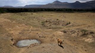Αιθιοπία: Αυξημένη η ανάγκη για επισιτιστική βοήθεια το 2016