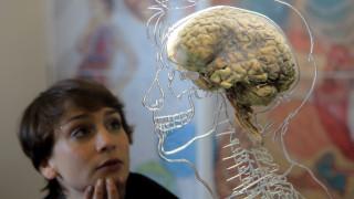 Οδήγηση με τον εγκέφαλο