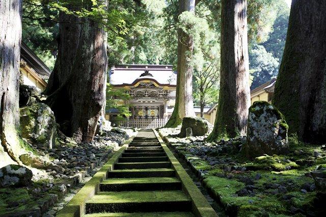 JAPAN TEMPLECambridge copy