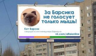 Οι κάτοικοι πόλης στη Σιβηρία θέλουν τετράποδο δήμαρχο