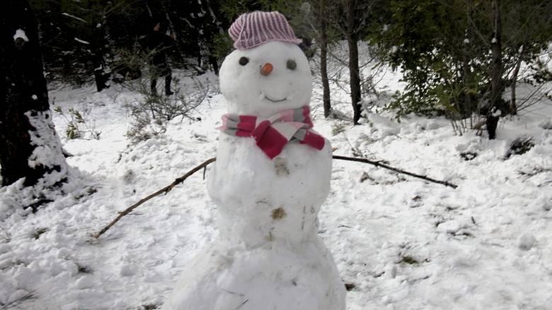 Χιόνι την Πρωτοχρονιά