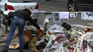 Τιμάται μετά θάνατον η σκυλίτσα της γαλλικής αστυνομίας Ντίζελ