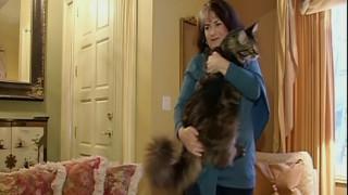 Ο θηριώδης γάτος που βλέπει βίντεο στο YouTube και κυνηγά σκίουρους