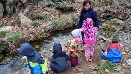 Ένα Σάββατο στο σχολείο του δάσους