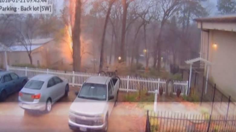 Η δύναμη της φύσης σε ένα βίντεο: Κεραυνός χτυπά δέντρο και το κόβει στα δύο