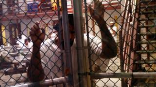 Κρατούμενος αποφυλακίζεται αλλά αρνείται να φύγει από το Γκουαντάναμο!