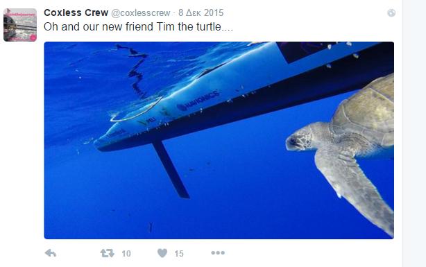 crew 1 turtlle