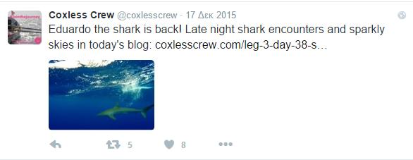 crew 3 shark