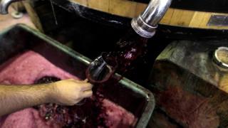 Προσφυγή στο Συμβούλιο της Επικρατείας για τον Ειδικό Φόρο Κατανάλωσης στο κρασί