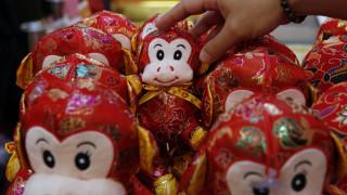 Η Κίνα υποδέχεται το Έτος του Πιθήκου