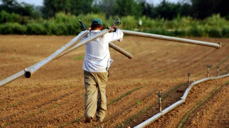 Εντός μηνός η επιστροφή ΦΠΑ σε αγρότες ειδικού καθεστώτος