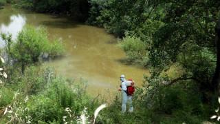 Ψεκασμοί τον Μάρτιο στην Αττική για ασθένειες που μεταδίδονται από κουνούπια