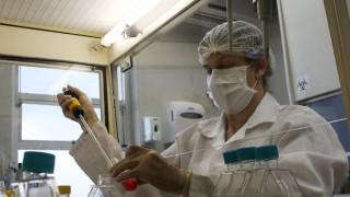 Βρετανοί επιστήμονες αποκαλύπτουν νέα στοιχεία για τον Ζίκα