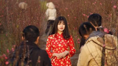 Ετοιμασίες για το νέο σεληνιακό έτος στο Βιετνάμ