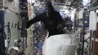 Γορίλας εισβάλει στον ISS και τρομοκρατεί τους αστροναύτες