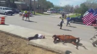 Χιούστον: Άλογα παρασύρουν αστυνομικό