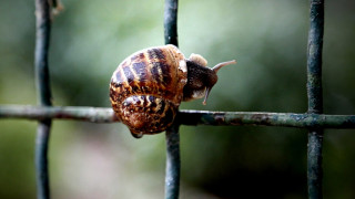 Βροχή: Όταν η φύση «ζωγραφίζει»