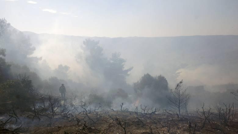 Σε εξέλιξη πυρκαγιά στα Σφακιά του νομού Χανιων