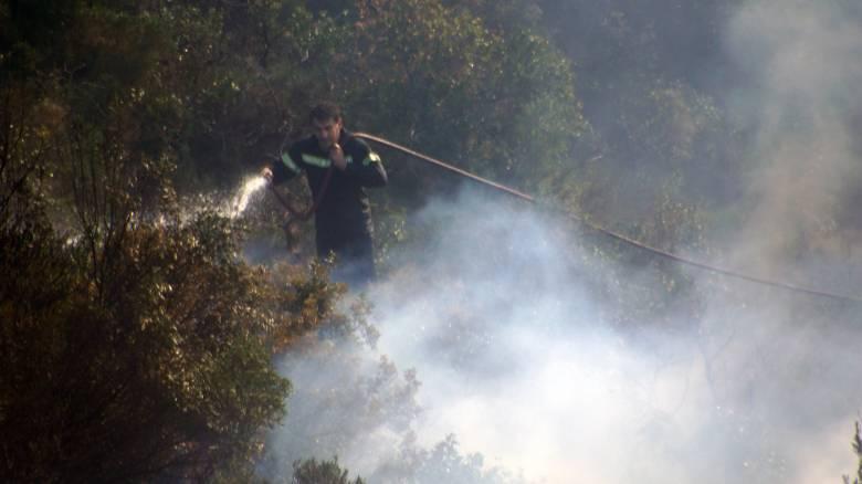 Μεγάλη φωτιά κατακαίει πευκοδάσος στη Σκόπελο