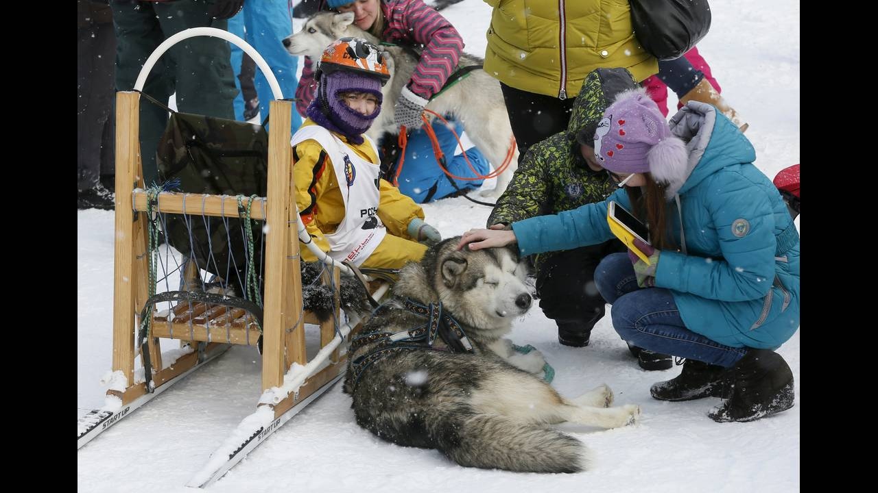 https://cdn.cnngreece.gr/media/news/2016/03/08/24457/photos/snapshot/RUSSIA-ANIMALS9.jpg