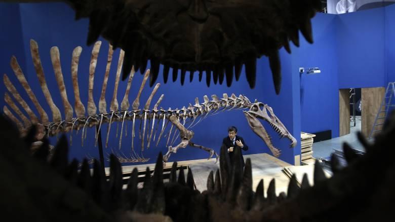 H υπερθέρμανση του πλανήτη εξαφάνισε τους ιχθυόσαυρους