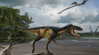 Βρήκαν δεινόσαυρο-πρόγονο του τυρανόσαυρου Ρεξ στο Ουζμπεκιστάν