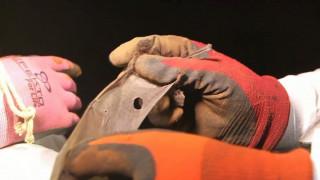 Οι νυχτερίδες που μεταφέρουν τον ιό έμπολα