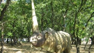 Το ζώο που δημιούργησε  το μύθο των μονόκερων