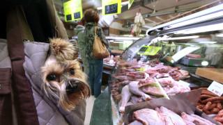 Οι αποκαλύψεις της Interpol για την παγκόσμια μαφία της διατροφής
