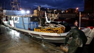 Τρεις φοιτητές δίνουν πνοή στην ελληνική αλιεία