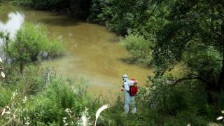 ΚΕΕΛΠΝΟ: Ανησυχία για την πρόωρη εμφάνιση κουνουπιών