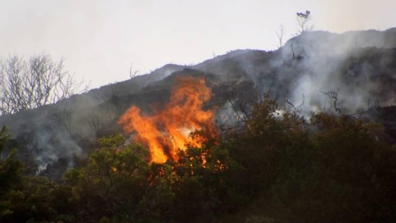 Μεγάλη πυρκαγιά σε εξέλιξη στην Ανατολή Ιεράπετρας