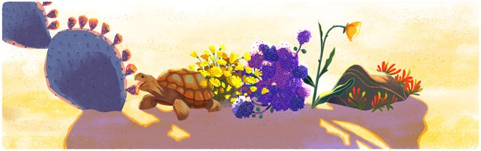 Google 2016 04 22 Sophie Diao E4 Desert Turtle unnamed
