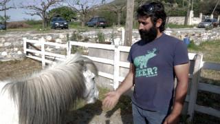 Ο Μανώλης, η Ελπίδα και τα Σκυριανά αλογάκια