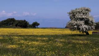 Πάσχα 2016: Περιήγηση στα πασχαλινά έθιμα της Ελλάδας
