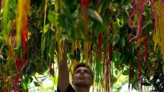 Ένα στα πέντε είδη φυτών κινδυνεύει με εξαφάνιση
