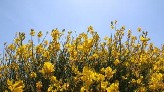 «Μύρισε» Καλοκαίρι: Στους 28 βαθμούς η θερμοκρασία την Τετάρτη