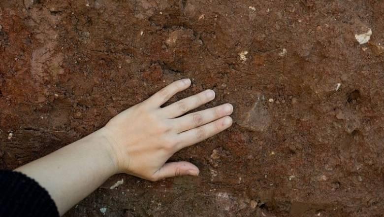 Ανακαλύφθηκε ο αρχαιότερος πέλεκυς ηλικίας 46.000-49.000 ετών