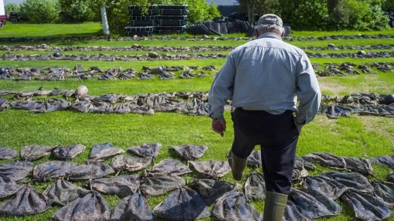 Columbia: Η γεωργία υπεύθυνη για την πιο επικίνδυνη μόλυνση