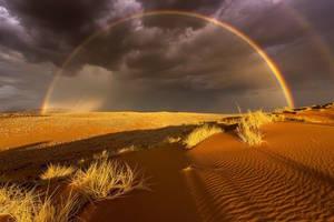 Στον εθνικό δρυμό Namib Naukluft.