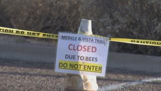 Πεζοπόρος πέθανε από χίλια τσιμπήματα μελισσών
