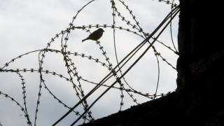 Ο ρόλος των ποινικών στη μεγάλη απόδραση του Κορυδαλλού