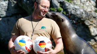 Euro 2016: Δύο θαλάσσιοι λέοντες και ένα κοάλα σάς στέλνουν ταμείο